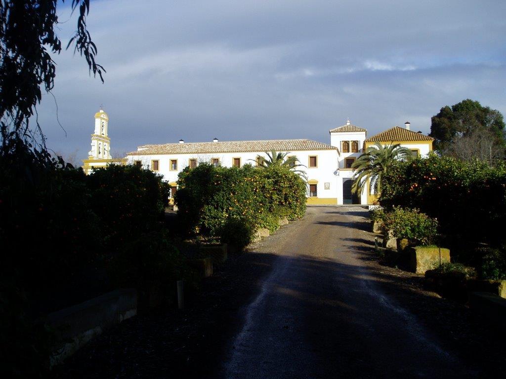 Las Escalonias (1)