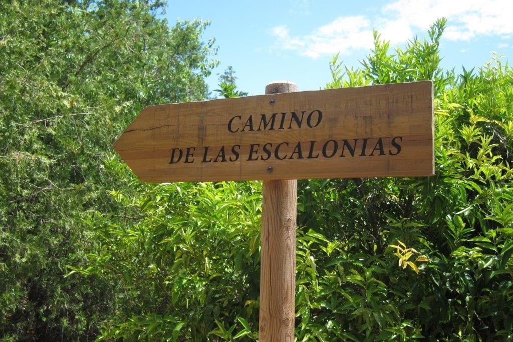 Las Escalonias (3)