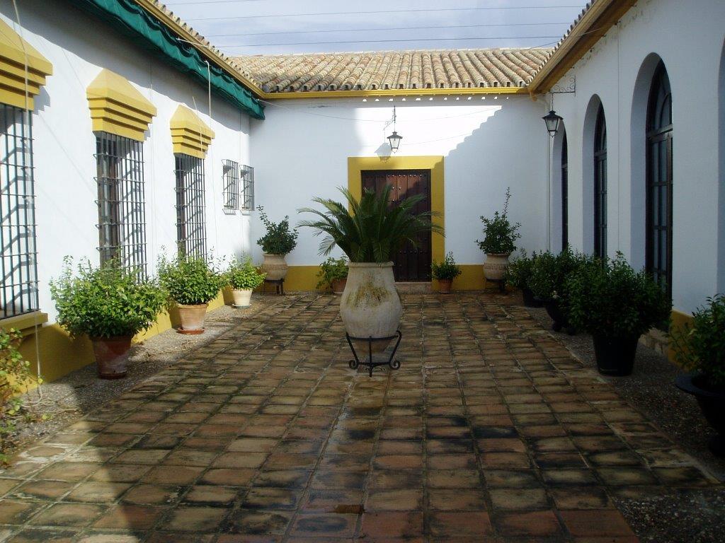 Las Escalonias (9)