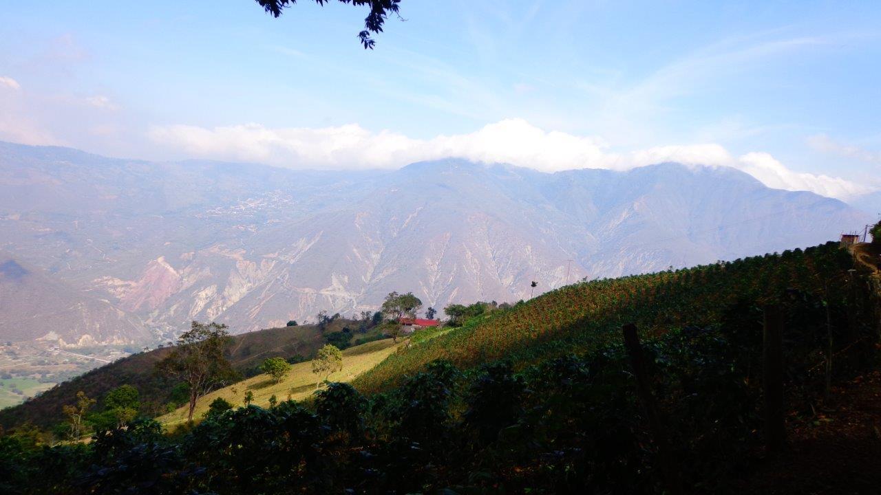 Los Andes (9)