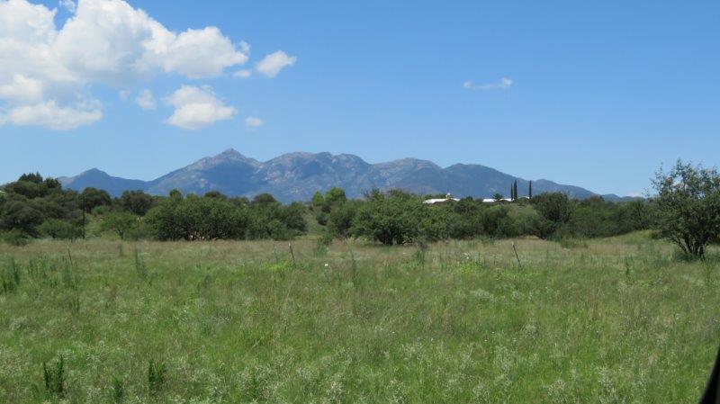 Santa Rita (1)