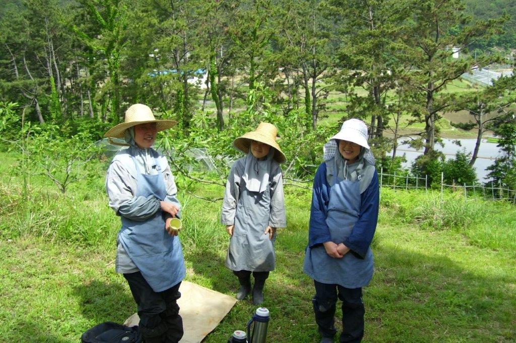 Sujong (4)