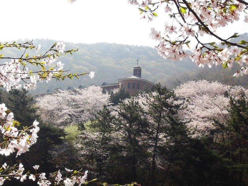 sujong-1