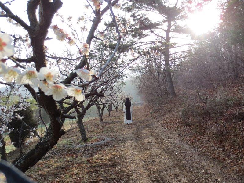 sujong-3