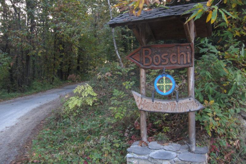 boschi_11