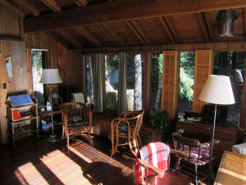 redwoods_04