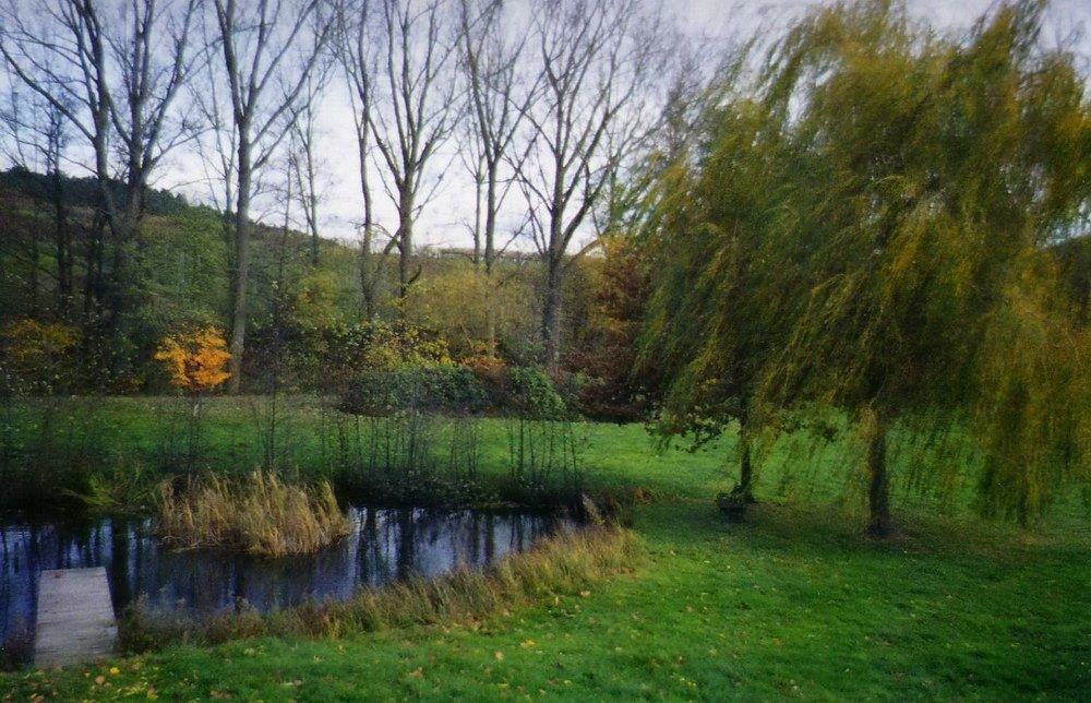 baumgarten-2